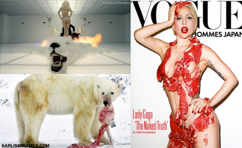 lady gaga revenge of the polar bear PETA billboard preview
